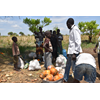 Environmental risk assessment & ecosystem mapping in South Sudan