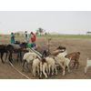 Acacia Water has started working on a new project in Darfur